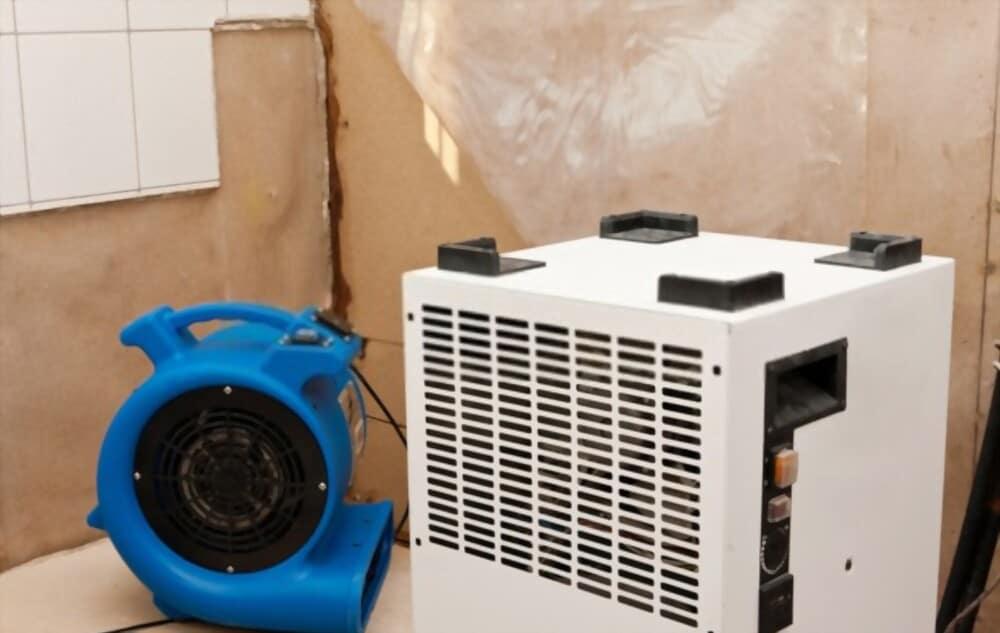 Dryer Fan